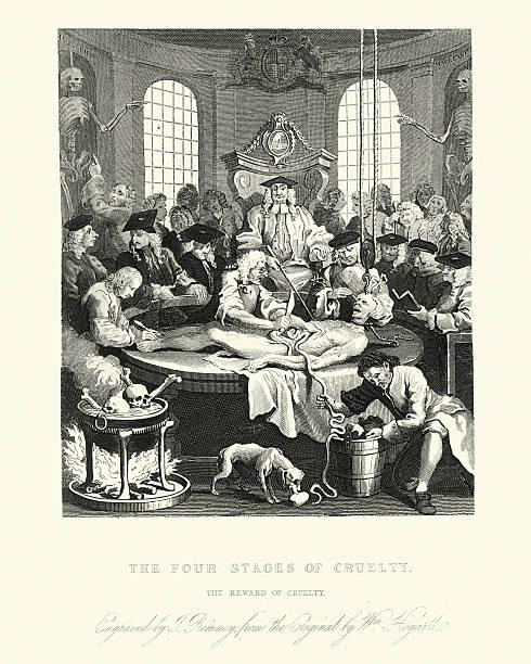 william hogarth's the reward of cruelty - autopsy stock illustrations, clip art, cartoons, & icons