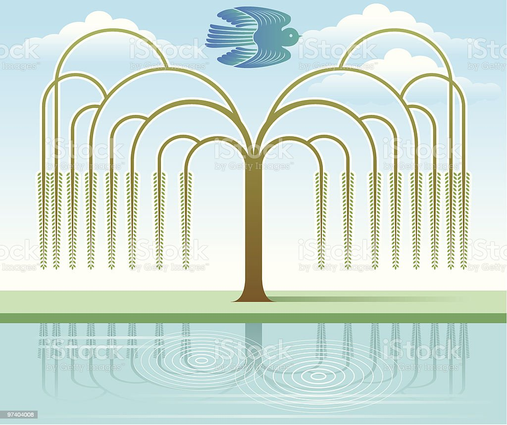 Willow tree royalty-free stock vector art