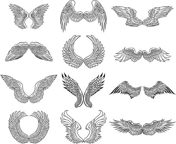 illustrations, cliparts, dessins animés et icônes de ailes de poulet - tatouages d'anges