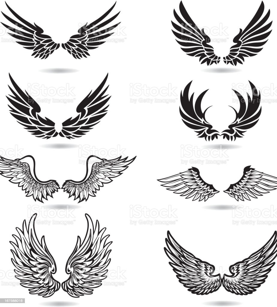 Wings Illustration vector art illustration