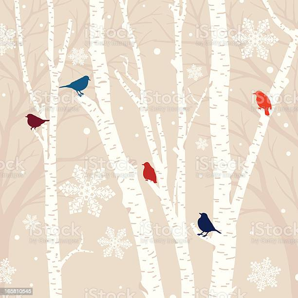 Winter birds background illustration id165810545?b=1&k=6&m=165810545&s=612x612&h=ykrskvapaqtb8kfi7bvbr9t7pqgw 84kozzju4qwn94=