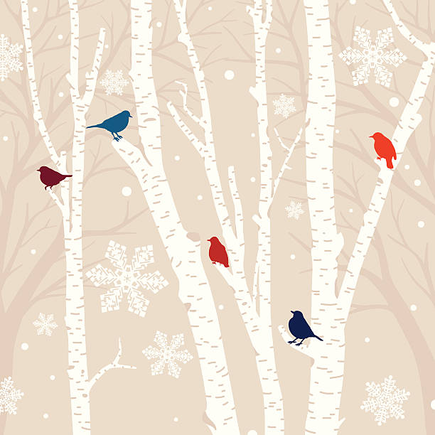 Winter Birds Background Winter birds and birch trees. bird backgrounds stock illustrations