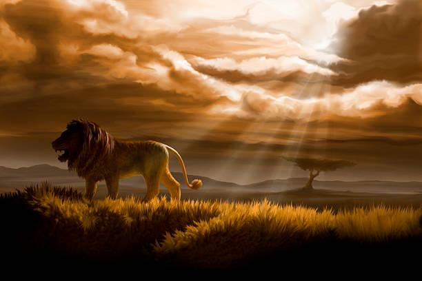 winter in lion's pride vector art illustration