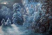 istock Winter night in the forest 1283916465