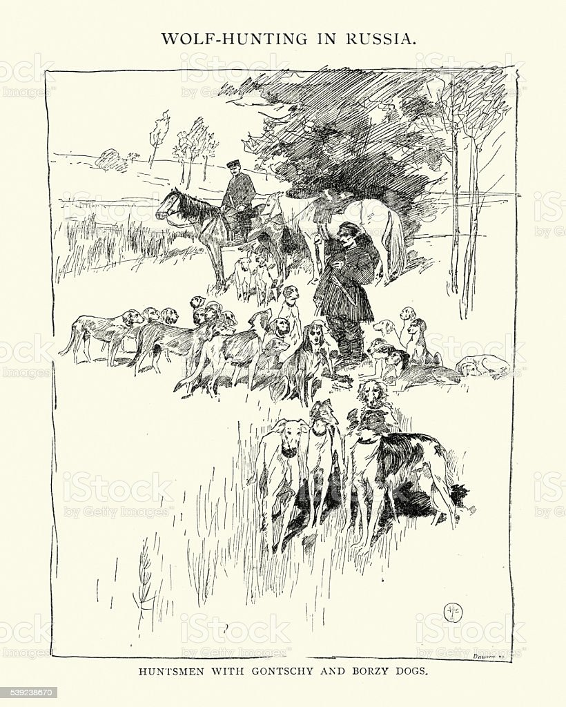Wolf Hunting in Russia, 19th Century royalty-free wolf hunting in russia 19th century stock vector art & more images of 1890-1899