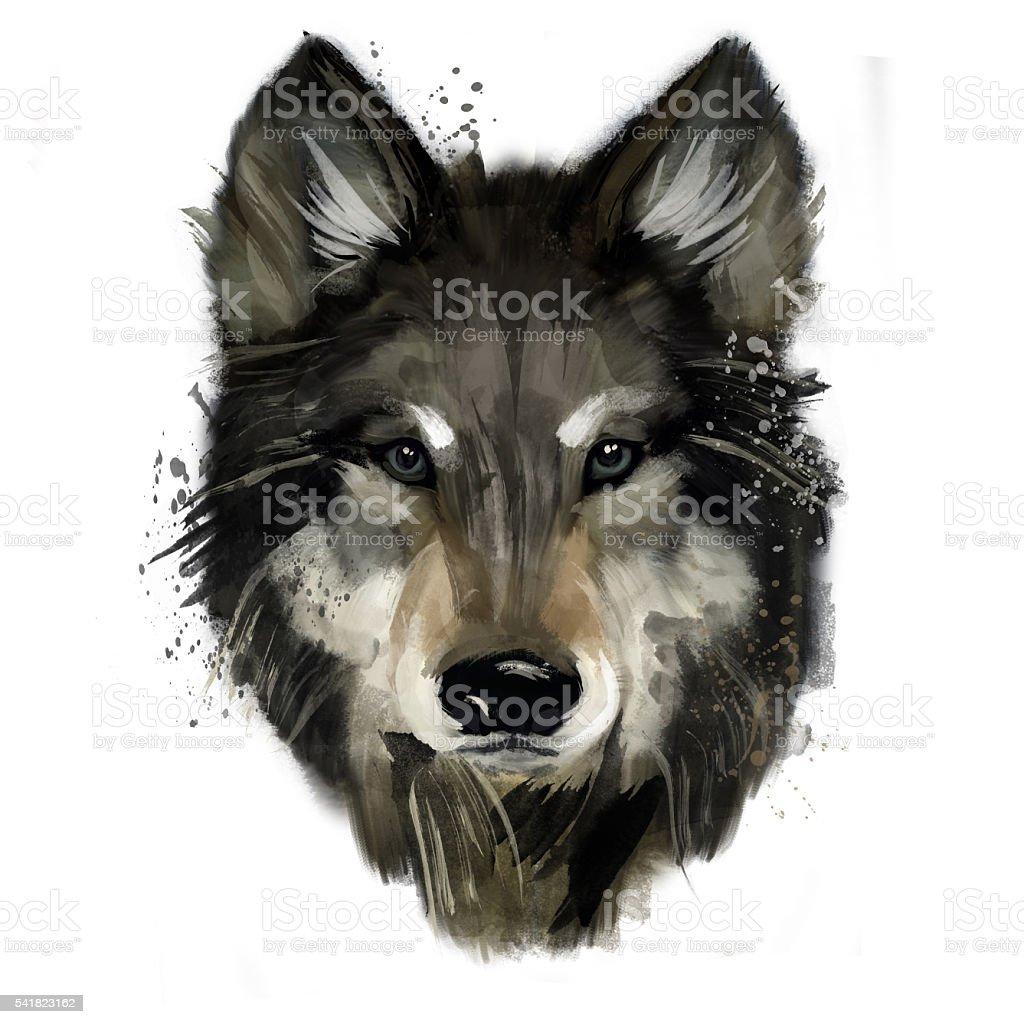 Wolf .watercolor illustration vector art illustration