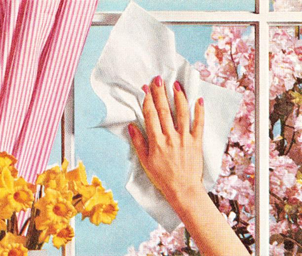 stockillustraties, clipart, cartoons en iconen met woman's hand cleaning window - vrouw schoonmaken