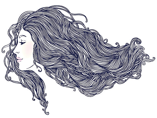Woman's profile with long beautiful hair vector art illustration