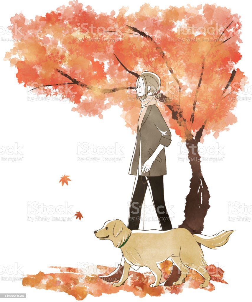 Golden retriever with a woman strolling under a tree in autumn