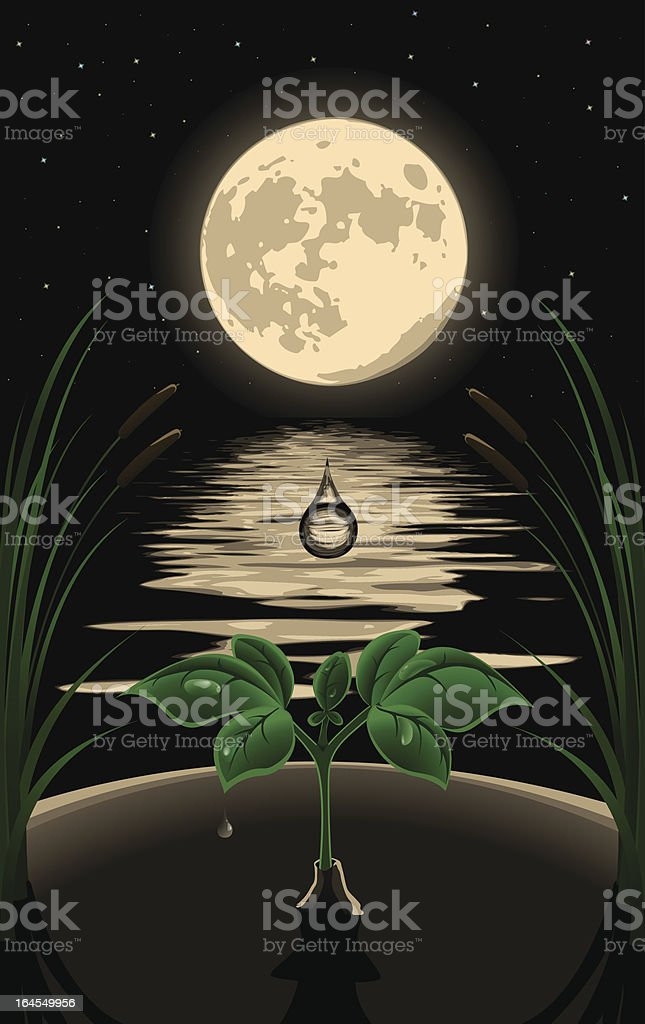 wonderful night royalty-free stock vector art
