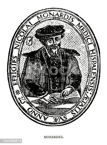 istock woodcut engraving of Nicolas Bautista Monardes 1242505314