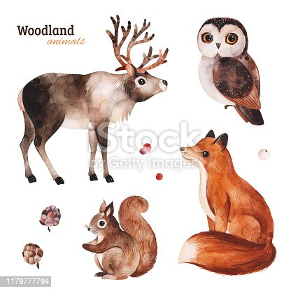 istock Woodland set with cute reindeer,fox,owl and squirrel 1179777794