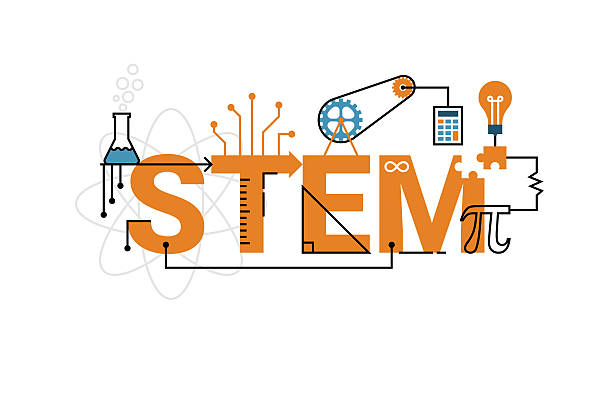STEM word typography design Illustration of STEM education word typography design in orange theme with icon ornament elements plant stem stock illustrations