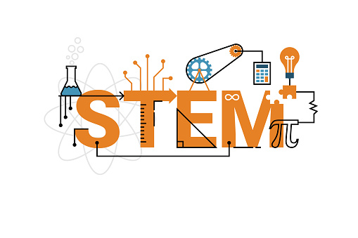 Stem Word Typography Design Stock Illustration - Download Image Now