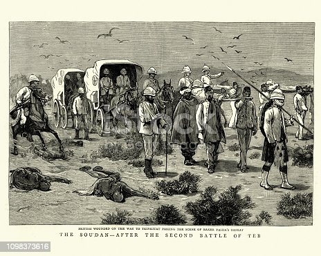 Vintage engraving convoy of wounded British soldier after the Second Battle of El Teb, The Graphic, 1884