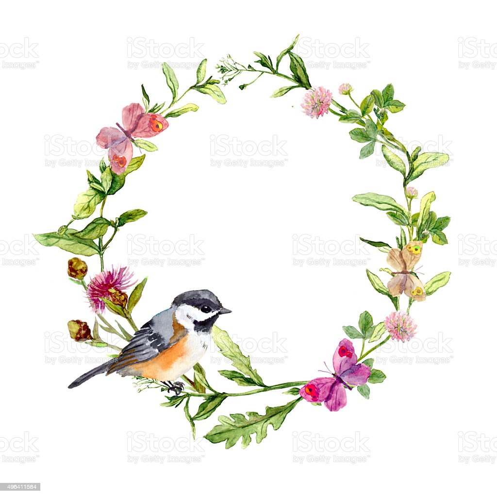 Wreath Border Frame With Herbs Meadow Flowers And ...