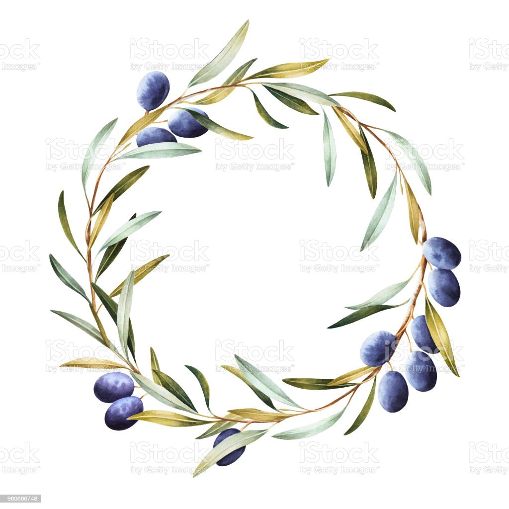 Wreath of olive tree  branches. vector art illustration