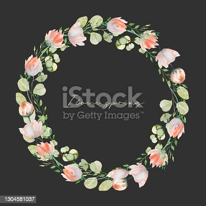 istock Wreath of watercolor spring plants: pink tender wildflowers, greenery and eucalyptus branches; hand painted isolated illustrations on a dark background 1304581037