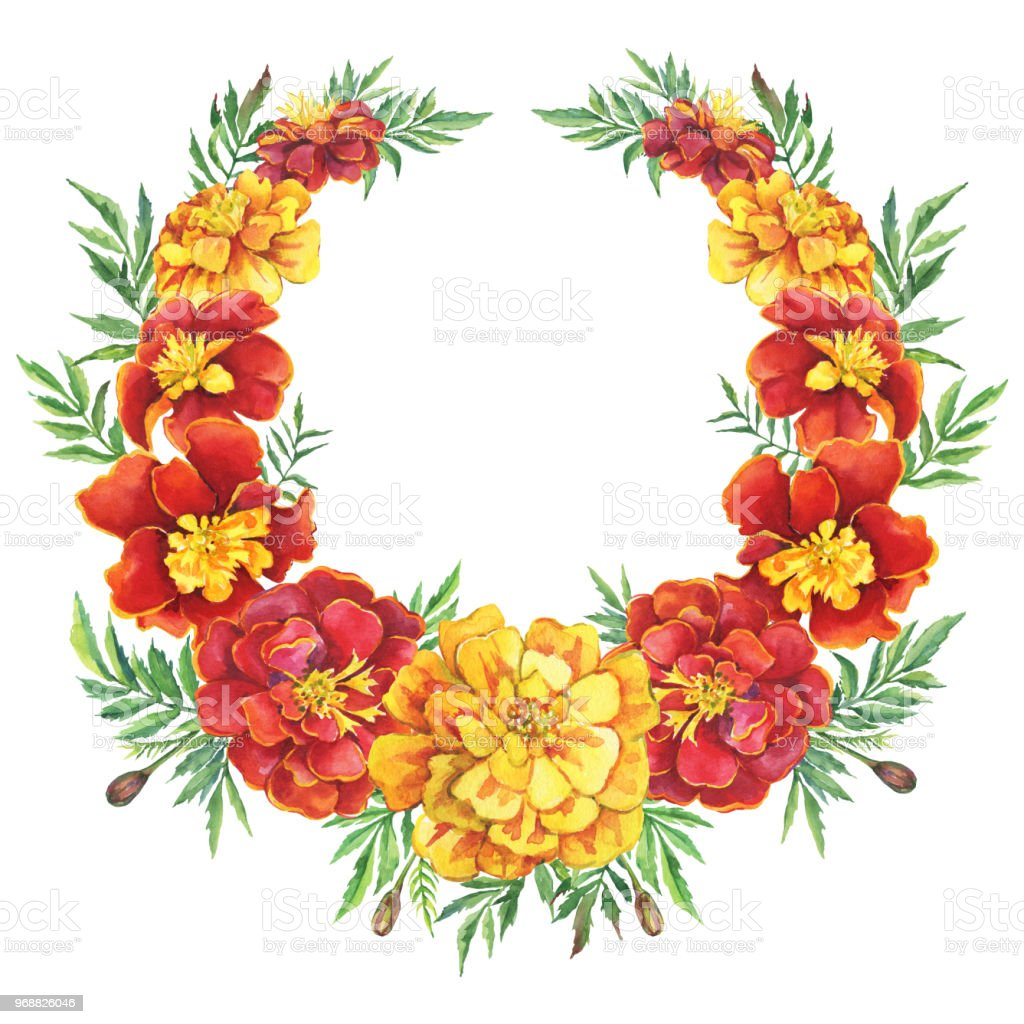 Wreath round frame with a red yellow flowers tagetes patula the wreath round frame with a red yellow flowers tagetes patula the french marigold mightylinksfo