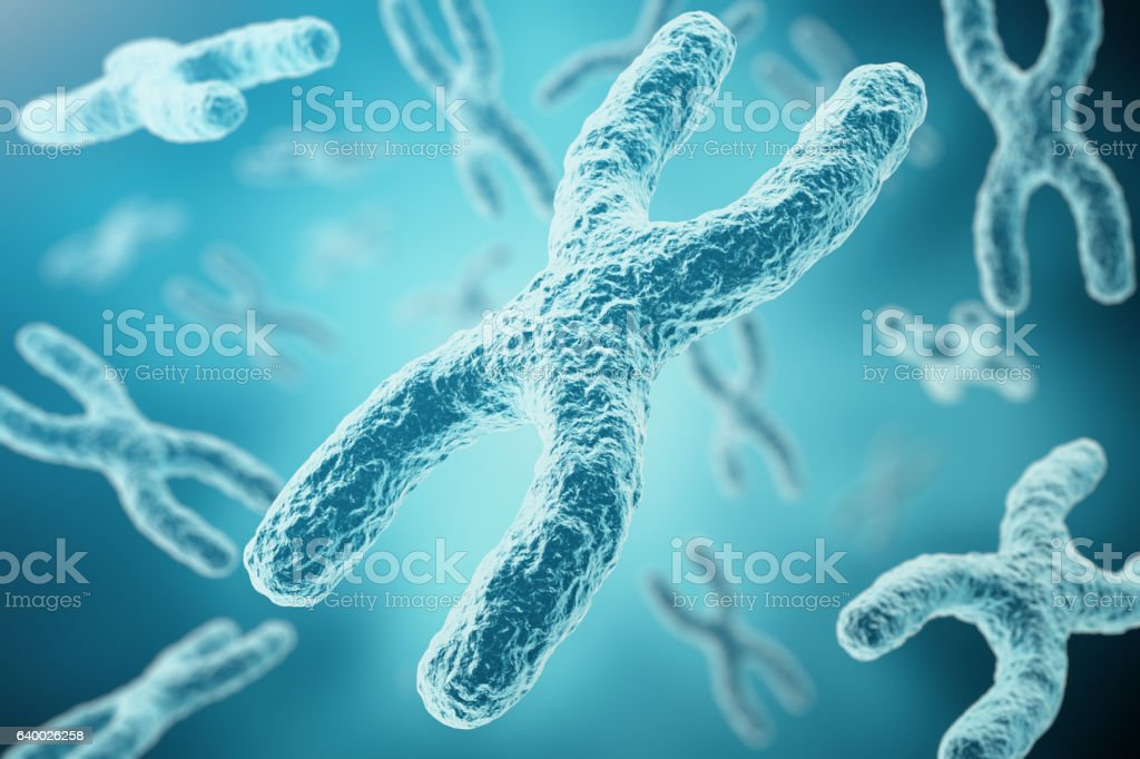 XY-chromosomes as a concept for human biology medical symbol vector art illustration