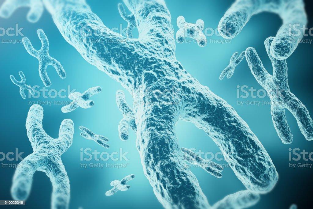 XY-chromosomes as a concept for human biology medical symbolvectorkunst illustratie