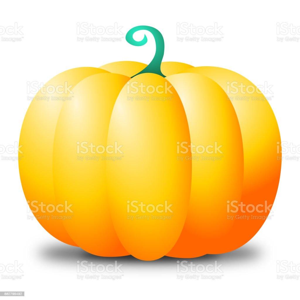 Yellow pumpkin vector art illustration