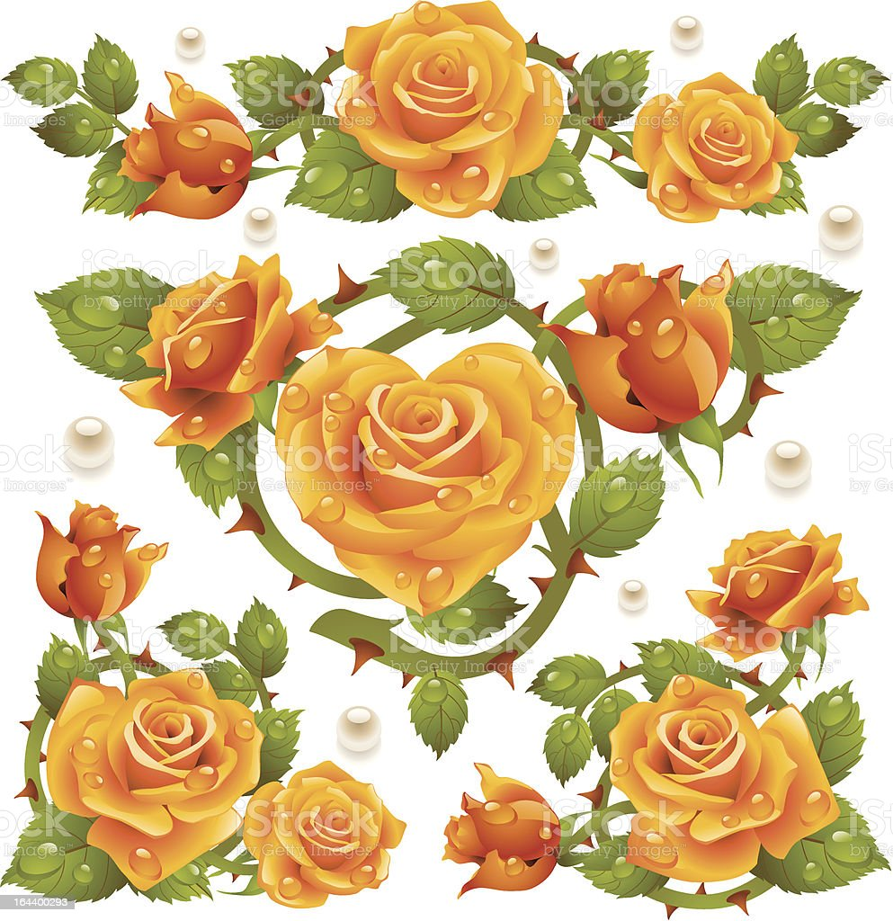 Yellow Rose design elements royalty-free stock vector art