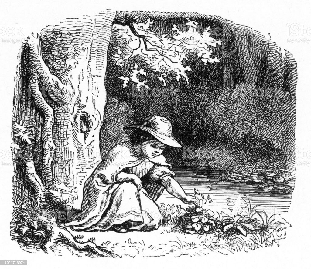 Young girl picking wildflowers in the forest, American Victorian Engraving, 1882 vector art illustration