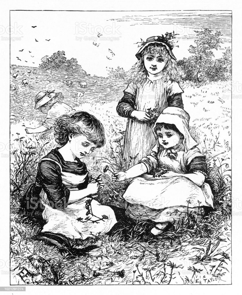 Young girls picking flowers in a meadow, American Victorian Engraving, 1882 vector art illustration
