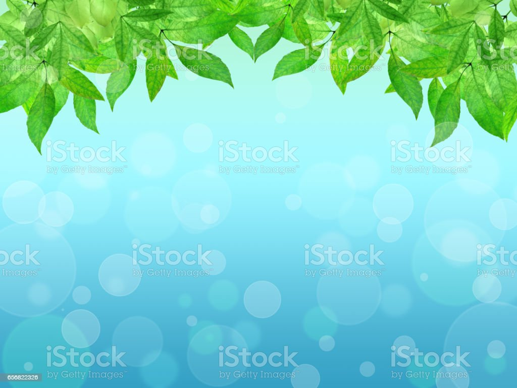 Young leaves on a blue background. Spring background. Summer. Nature. vector art illustration