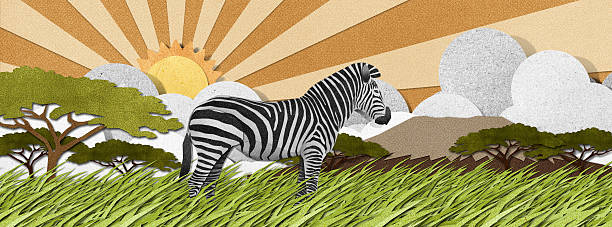 bildbanksillustrationer, clip art samt tecknat material och ikoner med zebra made from recycled paper background - single pampas grass