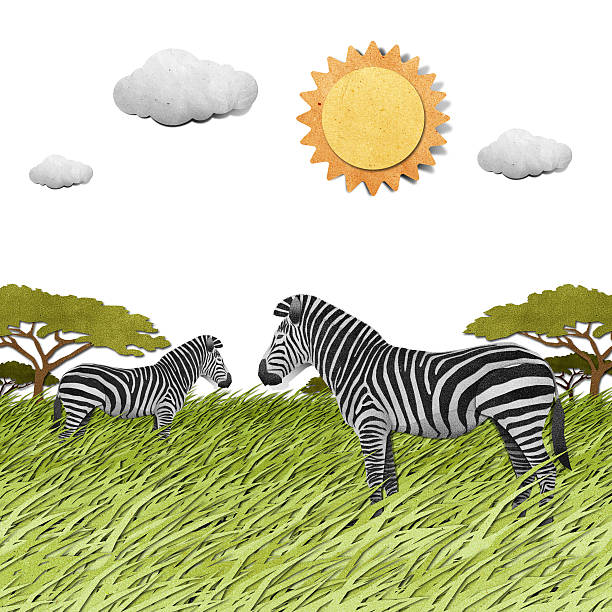 bildbanksillustrationer, clip art samt tecknat material och ikoner med zebra recycled paper background - single pampas grass