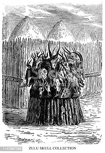 Zulu Skull Collection - Scanned 1890 Engraving