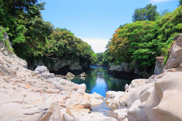 쇠소깍,바위,바다,나무,제주도,여름 - jeju island stock photos and pictures