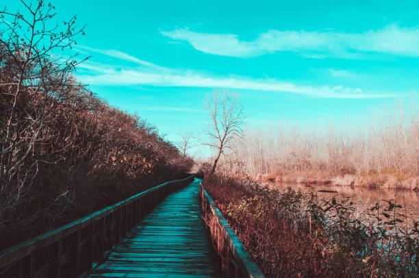ACARLAR AUWALDES (LONGOZ) – Foto