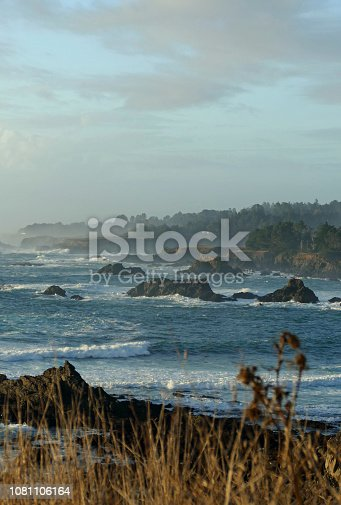 MENDOCINO HEADLANDS OCEAN WAVES