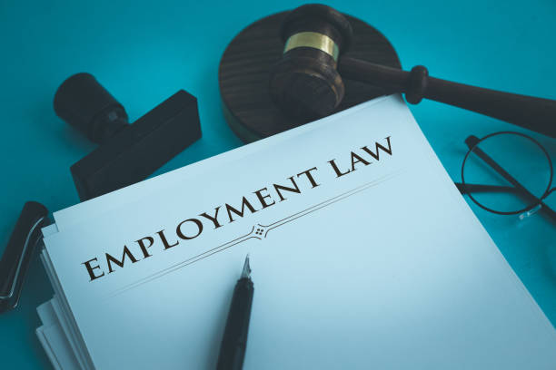 EMPLOYMENT LAW EMPLOYMENT LAW employment and labor stock pictures, royalty-free photos & images
