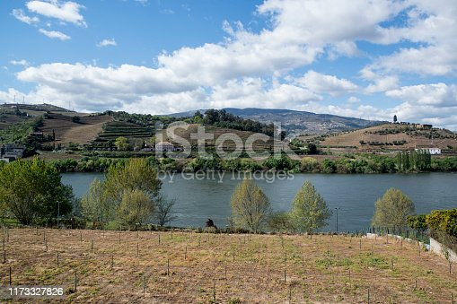 a winery of Sandeman in the Landscape of the Douro River at the town of Reso da Regua, east of Porto in Portugal in Europe.  Portugal, Regua, April, 2019
