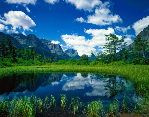 st. marys lake glacier np usa - st. mary lake stock pictures, royalty-free photos & images