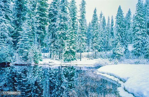 STILL WATERS  OF THE ROGUE RIVER REFLECT SNOW LAIDENED EVERGREEN FOREST, OREGON