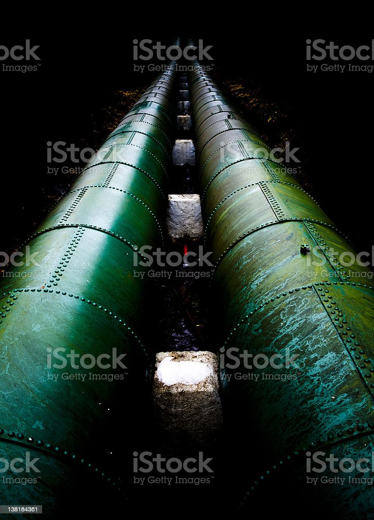 GFP royalty-free stock photo