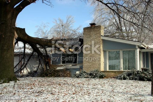 A large oak tree on a house after a terrible ice and snow storm!