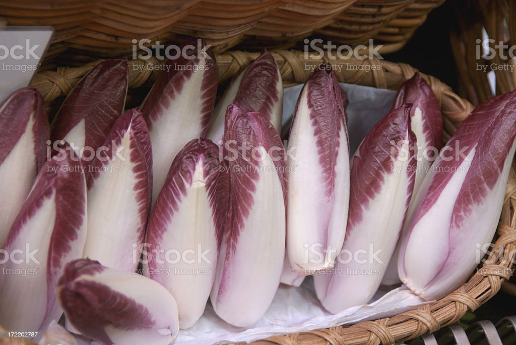 RED ENDIVE royalty-free stock photo