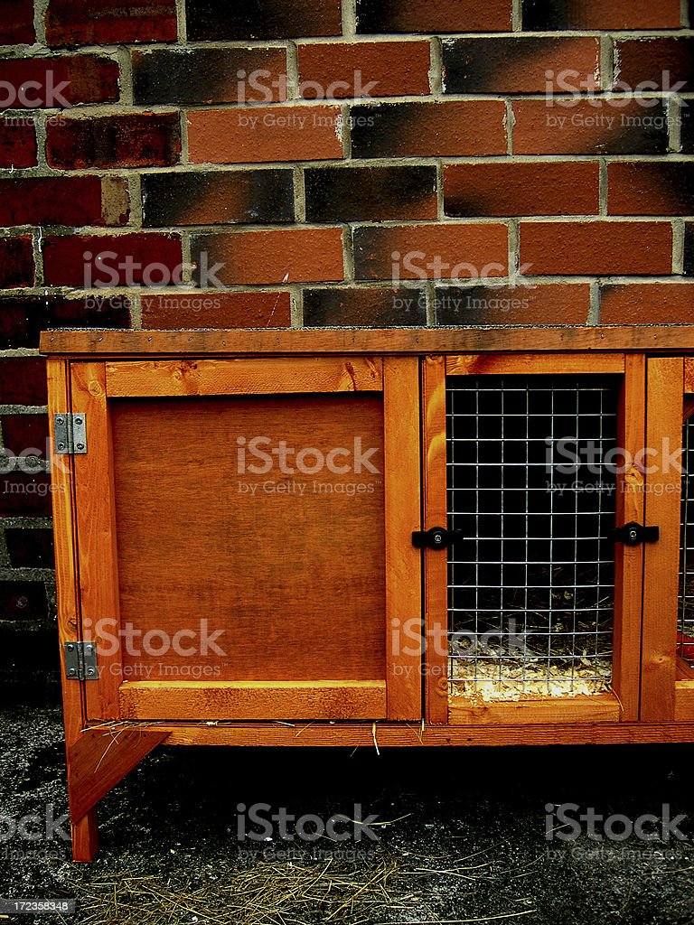 GUINEA PIG HUTCH royalty-free stock photo