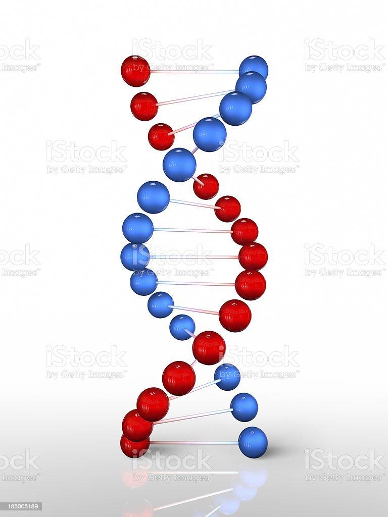 DNA – Foto