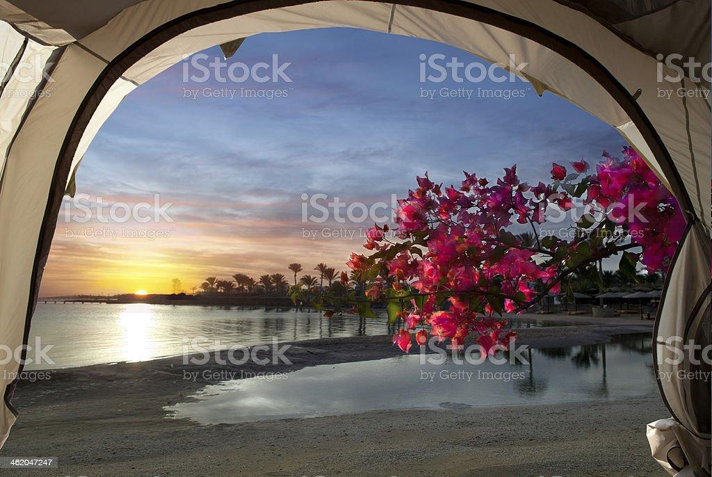 Ранний рассвет stock photo