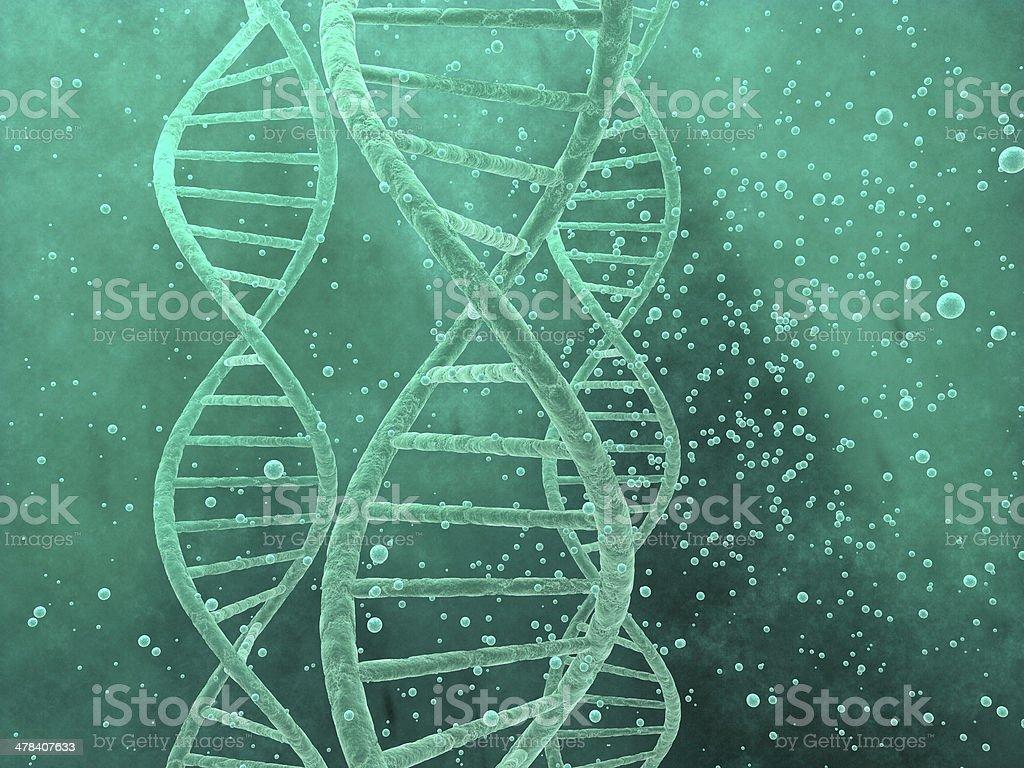 EL ADN foto de stock libre de derechos
