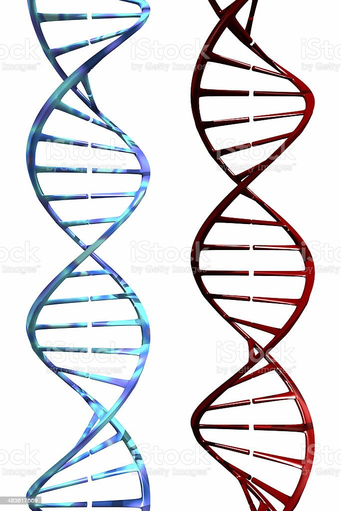 DNA (3D) royalty-free stock photo
