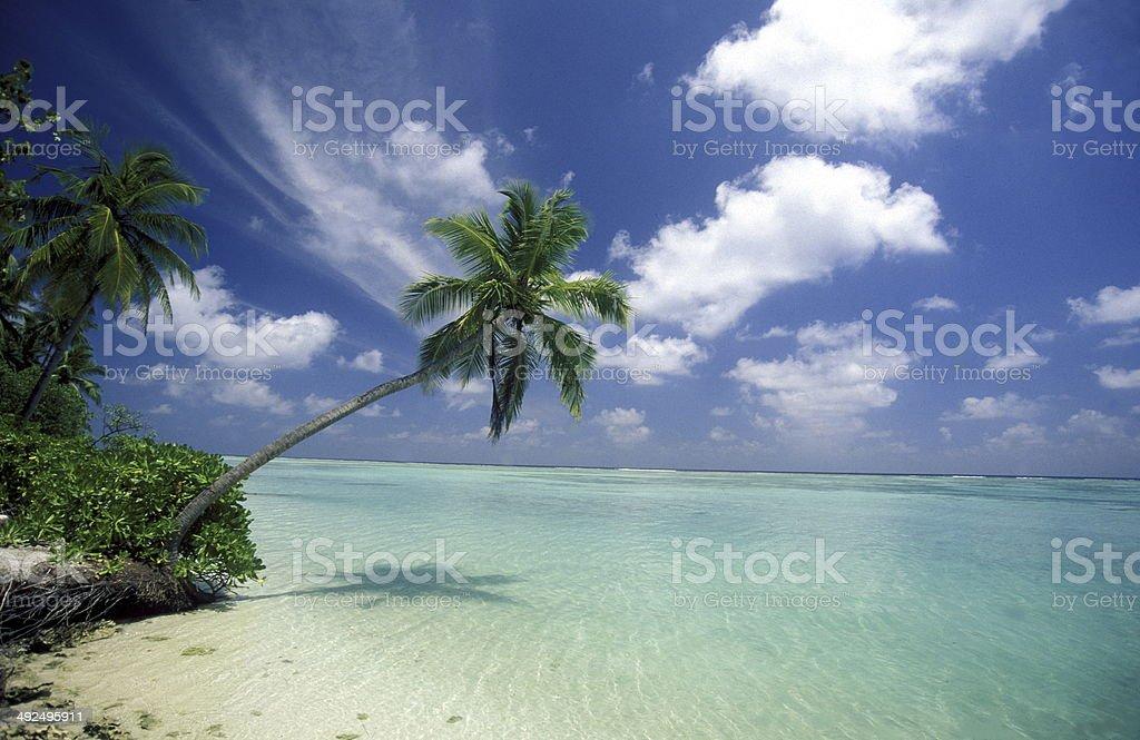 INDIAN OCEAN MALDIVES BEACH stock photo