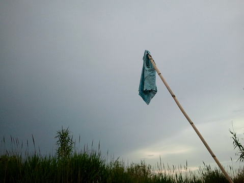 FLAG T-SHIRT / BANDERA CAMISETA